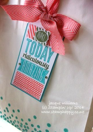 Stampin up amazing birthday gift bag mossy meadow