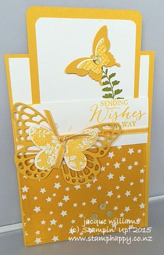 Stampin up butterfly basics resist pocket card